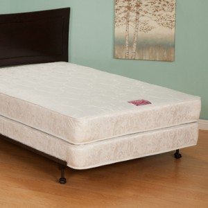 Atlantic Furniture Mattress Protector 300x300 Fred's Bed  Not As Great A Place As It Is Touted To Be